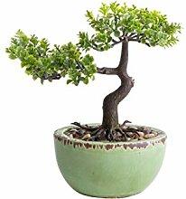 Unbekannt künstlicher Bonsai in grüner ovaler