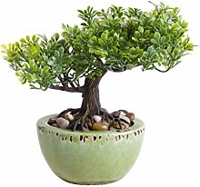 Unbekannt künstlicher Mini Bonsai in grüner