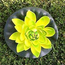 Unbekannt Wasserlilie Schwimmend Lotusblüte