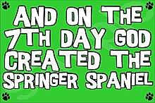 Und An Den Tag Mit Siebten God Created Der Springer Spaniel - Jumbo Magnet Etui Schutz Schutzhülle Case Hund Hündchen Als Geschenk/Jubiläum
