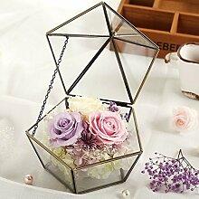 Unsterbliche Rose Glas-gewächshaus/Erhaltene