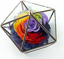 Unsterbliche Rose Glas-gewächshaus/Unsterbliche