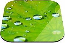 Untersetzer Blatt mit Wassertropfen B x H: 10cm x 10cm - 4er Pack von Klebefieber®