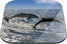 Untersetzer Delfine B x H: 10cm x 10cm - 4er Pack von Klebefieber®