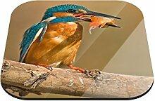 Untersetzer Eisvogel mit Fisch B x H: 10cm x 10cm - 12er Pack von Klebefieber®
