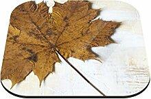 Untersetzer Herbstblatt B x H: 10cm x 10cm - 20er Pack von Klebefieber®