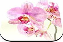 Untersetzer Orchideenblüte B x H: 10cm x 10cm - 4er Pack von Klebefieber®