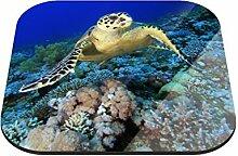 Untersetzer Schildkröte B x H: 10cm x 10cm - 4er Pack von Klebefieber®