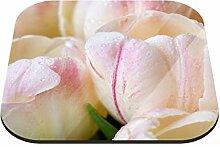 Untersetzer Tulpen mit Tautropfen B x H: 10cm x 10cm - 20er Pack von Klebefieber®