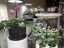 Urban Farm Intelligent Plant Growth Machine Hydroponics Blume 3 - Loch Tischlampe Blume Blume - Blume - Fisch Anbau Zubehör , black