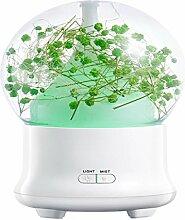 URIJK USB Mini Aromatherapie Luftbefeuchter Blume Hause Ultraschall Aroma Büro Schlafzimmer Geschenke