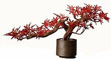 UUMFP Keramik-Verzierung Roter Ahorn Bonsai Wurzel