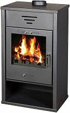 V17 - Victoria 05 Holzverbrennung Festbrennstoff