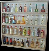 V47 Vitrine Miniatur-Flaschen Hängevitrine Regal