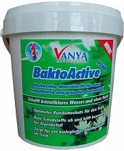 VANYA BaktoActive POND 1,2 kg