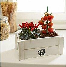 Verdemax–Box Garten Gemüse Easy Botanische