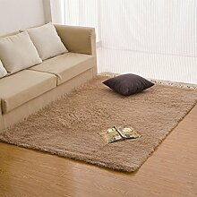 Verdickte rechteckige Bett Teppich/ Zimmer-Schlafzimmer mit Teppich/ Plüsch Wohnzimmerteppich-L 80x160cm(31x63inch)