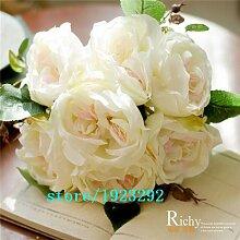 Verkauf! 200 Lavendel sät --hardy und Wärme tolerant DIY Topf oder Hof duftend Blumensamen Pflanze, leicht wachsend