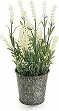 Versa 21180003 Lavendel künstliche Pflanze, Metall, Grün, 9x9x24 cm