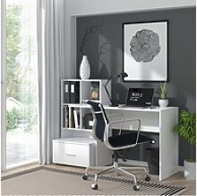 Vicco Schreibtisch LORIS Weiß Computer Bürotisch