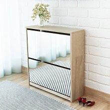 vidaXL Schuhschrank mit 2 Fächern Spiegel