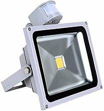 VINGO® 50W LED Fluter Flutlicht Außen Strahler