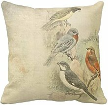 Vintage Birds Worn Design Throw PillowCustomized Square Custom Throw Pillow Case Cushion Cover Pillowcase Pillow Cover 20x20