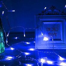 Vinteky® Mini 500er LED Lichterkette für Weihnachten Blumendekor Dekoration Beleuchtung (Blau)
