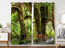Violetpos 245 x 140 cm Tropischer Regenwald Wald