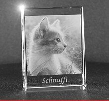 VIP-LASER 2D Gravur Glas Kristall Flachglas