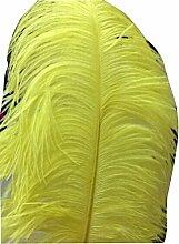Viskey Home Dekoration Pfau Federn, Gelb - yellow3