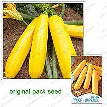 Vistaric 10 Samen/Pack Topf Bananenmelone Samen