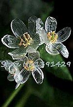 Vistaric 100 stücke 24 arten verschiedene stil