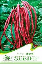 Vistaric Gemüsesamen rote Bohne Winkel