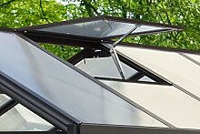 Vitavia Dachfenster für Gewächshaus Cronos, ohne