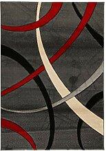 Viva Terra Teppich Synthetikfaser grau/rot 120 x
