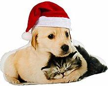 vivaDOMO Weihnachtskissen, Dekokissen