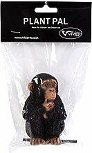 Vivid Arts Blumentopf PAL Range–Baby Chimp