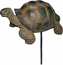 Vivid Arts Blumentopf PAL Range–Schildkröte