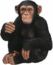 Vivid Arts Pflanze PAL Serie–sitzend Chimp