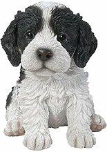 Vivid Arts Schild Cockapoo Puppy–Schwarz/Weiß