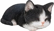 Vivid arts- Sleeping Pet pals- schwarz & weiß Kätzchen