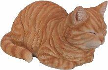 Vivid Arts Träumende Katze, rot, Kunstharz