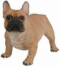 Vivid Arts XRL-FRBD-A Französische Bulldogge