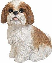 Vivid Arts XRL-SZ12-B Shih Tzu Hund, braun-weiß, sitzend, Kunstharz Gartendeko