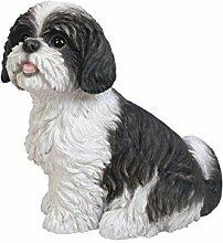 Vivid Arts XRL-SZ16-B Shih Tzu Hund, schwarz-weiß, sitzend, Kunstharz Gartendeko