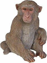Vivid arts- Zoo Pet pals- macacque Affe (Größe A)