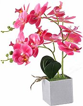 VIVILINEN Künstliche Blume Phalaenopsis