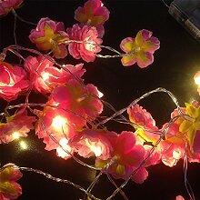 VLENIEN Blume Lichterkette 6,5 ft 20LED Rosa Seide Blümchen Batterie Lichterkette Hochzeit Partydekoration(Warmes weißes Licht)