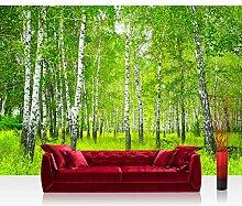 Vlies Fototapete 350x245 cm PREMIUM PLUS Wand Foto
